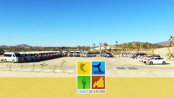 Cabo seasons cabo transportation by cabopedia for Cabo fishing seasons