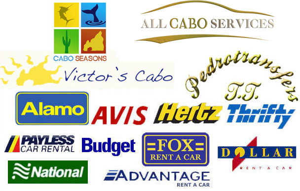 cabo car rental companies